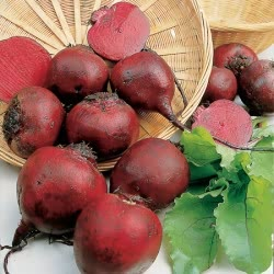 Bolthardy beetroot seeds