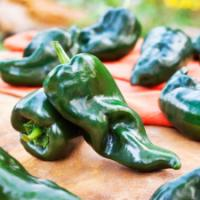 Poblano Ancho chilli pepper